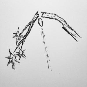 Gravity-Branch